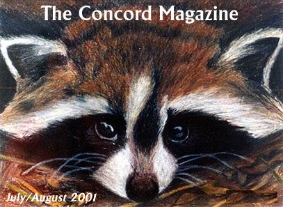 Concord magazine 2