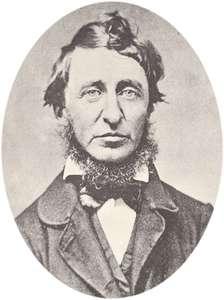 Thoreau - Ovale